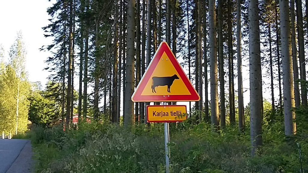 Karjaa tiellä